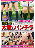 Schoolgirl Groups Thighs 7 Panty Shots 下載