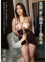 Wife With Colossal Tits Violated By Her Kinky Family Aoi Aoyama 下載