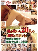"""The """"Squirting Spots"""" Of 20 Girls Who Squirted. The Exquisite Pussy Trembles Its Sensitive Walls 下載"""