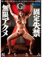 Vibrators In, Golden Showers Out! The Infinite Orgasms of Chinami Sakura 下載