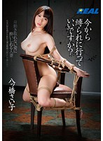 Can I Get Tied Up From Now On? Saiko Yatsuhashi Download