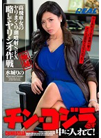 Don't Get Blue Balls, Just Put It In! Domineering Woman on Squirting Sex Rampage! Rino Mizushiro (172xrw00238ps)