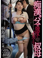 My Aunt Came Over And Over On The Molester Bus Ayako Kirishima (181dse01371)