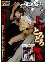 Top & Bottom Toro Toro Molester - A Schoolgirl Gets Groped On A Train So Crowded She Can't Move And It Makes Both Of Her Holes So Wet They Fuck Them At The Same Time As She Drips Lusty Juices And Loves It! 下載