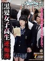 Black-Haired High School Babes - Reverse Molester - On An Overcrowded Train An Innocent-Looking Black-Haired Schoolgirl Gropes An Ugly Businessman Until He Cums! 下載