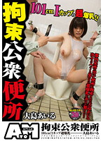 Tied Up In The Public Lavatory Airu Oshima (1atom00079)