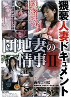 Steamy Housewife Documentary: Apartment Wife's Love Affair 2 Download