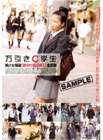 Shoplifting High School Student - Carefully Selected Beautiful Girl - Your Punishment Is Penetration - Complete Record 下載