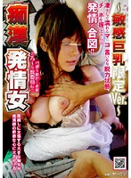 Molester Women In Heat - Sensitive Big Tits Only Ver. - 下載