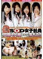 Our Newest Company Blossoms Of 2006 - SOD's Female Employees - Four Fresh Hire Friends Have Fallen! 下載