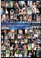 Wappu Entertainment: Special Highlights from the Entire Year 2014 (2dsd00103)