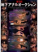 The Third Time Underground Anal Auction Download