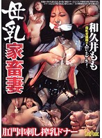 Breast Milk Livestock Wife Breast Milk Donor With Consent of Anal Penetration Momo Wakui (51cmf00008)