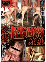Super Perverted Extreme Video Collection Download