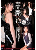 The Best of Reika Download