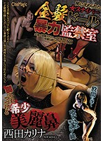 A Blonde Sniper Doll Descends Into Darkness And Brutality And Confinement Karina Nishida Download