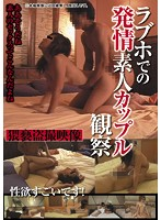 Caught on Tape: Amateur Couples in Love Hotels Download