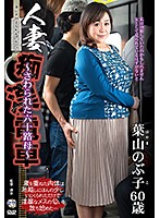 Married Woman Molester's Train--Somebody Touched Me--60 Something Hot Granny--Nobuko Hayama (h_086iro00021ps)