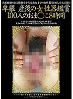 Immoral Pussy Watching Post Pregnancy 100 Pussies/8 Hours 下載