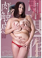 (h_127yal00057)[YAL-057] Voluptuous And Plump Flesh Fantasy Sayaka Kujo Download