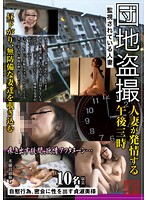 Apartment Voyeur Married Woman's Afternoon Trysts 下載