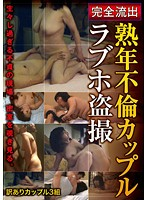 Adulterous Mature Couples Secretly Filmed In A Love Hotel Download