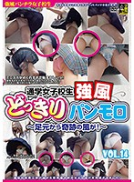 Strong Wind Blowing Up The Skirts of Girls On Their Way To School VOL. 14 - Miraculous Gusts from Underfoot! - Download
