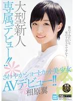 The Debut Of A Major New Actress!! The Energetic, Beautiful Girl With Short Hair Makes Her Porn Debut!! Tsubasa Aihara (hnd00222)