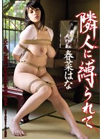 I Was Tied Up By My My Neighbor Hana Haruna Download