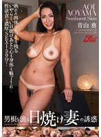 Cock-Hunting Tanned MILF's Temptation   Aoi Aoyama (jufd00397)