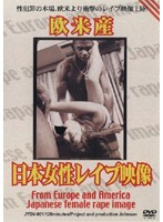 Made in the West: Japan Girl Rape Video Download
