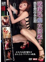 Insatiable Cougars 2 Download