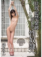 Abduction, Confinement, S&M, And Sexual Slavery Kanon Haruka (miad00829)