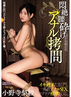Moaning & Collapsing: Anal Torture Risa Onodera Download