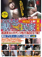 All POV Voyeur Private House [Issue 30] stage 3 Download