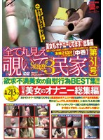 All POV Voyeur Private House [Issue 31] stage 3 Download