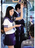 A Schoolgirl Is Taught A Lesson in Ecstasy By The Hands Of A Molester While On Her Way To School Starring Ann Tsujimoto 下載