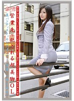 Working Woman vol. 63 Download
