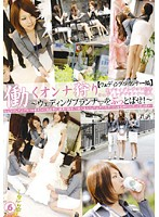 Chasing Working Women 6 [Wedding Counselor Edition] 下載