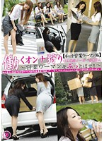 Chasing Working Women 9 [Route Saleswoman Edition] 下載
