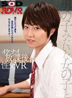 3DSVR-0607 JAV Screen Cover Image for VR-A Girl Who Acts Like A Boy-If You Help Me Keep It Secret That I'm Really A Girl I'll Do Anything You Want-After School VR from Sod-Create Studio Produced in 2020