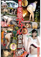 Posted By The Perverted Anal Club. Hitomi Sakura Download