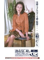 Mature Woman Mania Blooming High Class Yamanote Lady's Skill vol. 3 Download