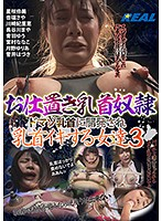 Punishment Of Nipple Sex Slaves Women Who Get Their Masochism Tits Blossomed Into Nipple Orgasmic Ecstasy 3 Download