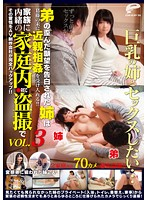 I Want To Have Sex With My MILF Sister...The Sister Accepts Her Brother's Confession And Decides To Have Incestuous Sex With Him! We Filmed The Two Secretly Having Sex At Home! vol. 3 Download