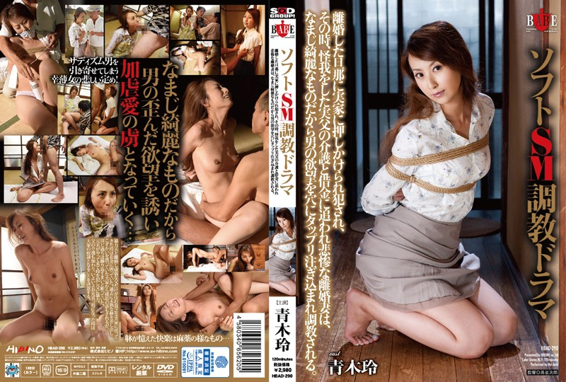 HBAD-290 best free porn Rei Aoki Soft S&M Breaking In Drama See What Happens When Her Divorced Husband Breaks Into The House And