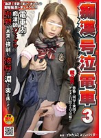 Crying on Molester Train 3 Download