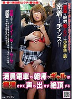 Gal Coming Home From A Night Out Gets Molested On a Packed Train! Download