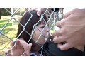 Chain Link Fence Rape Campus preview-5