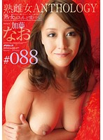 [All MILFS Tell More Lies... ] MILF Bitch Anthology #088 Nao Kato Download